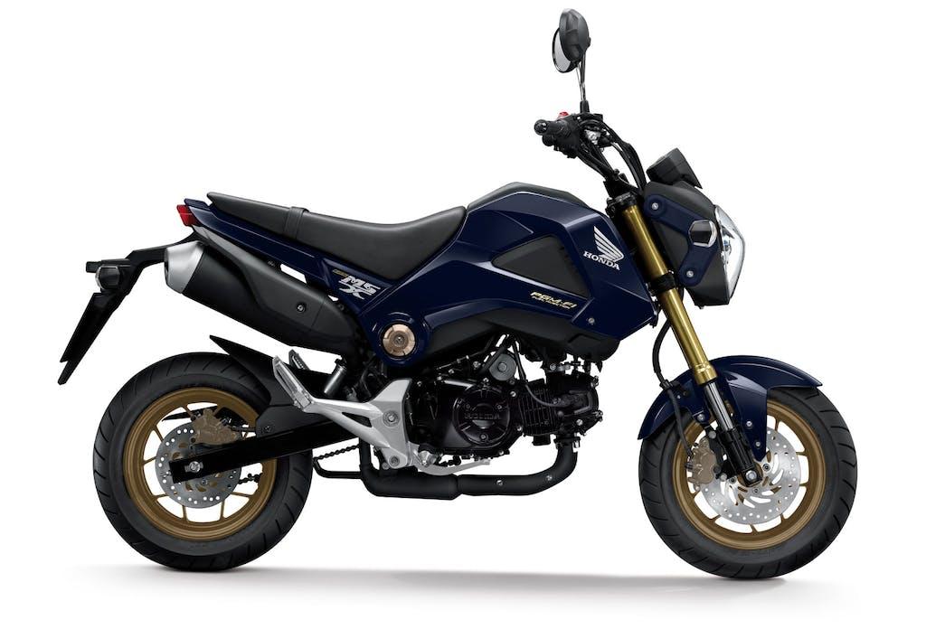 Honda MSX125: nuove colorazioni per il 2014