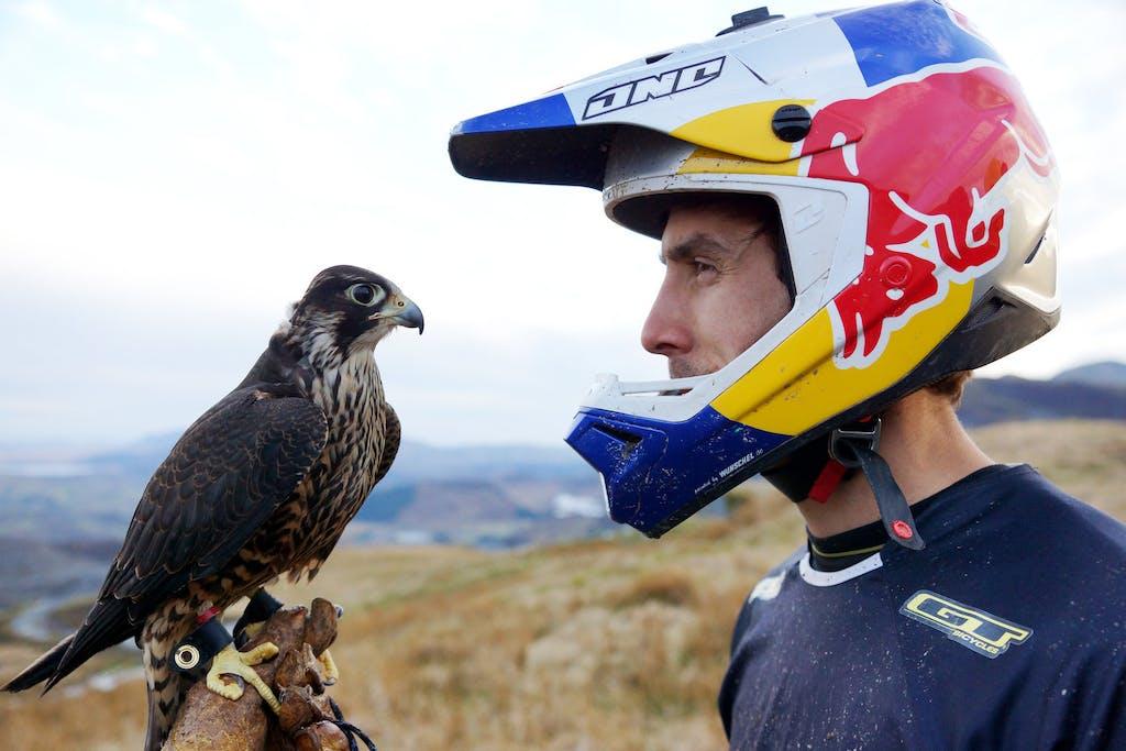 Bici contro Falco, la nuova sfida