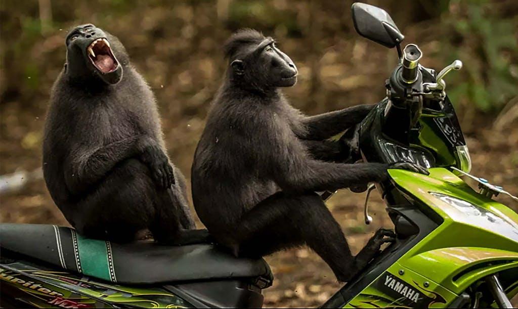 Come iniziare a guidare la moto