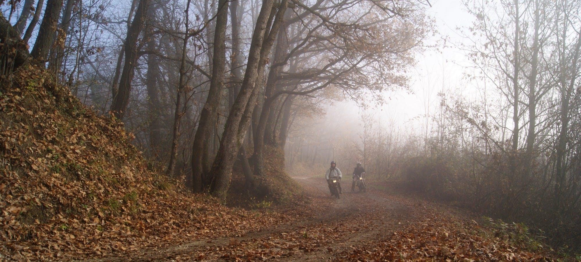 Suggestivi i paesaggi del Monferrato, teatro di questa avventura