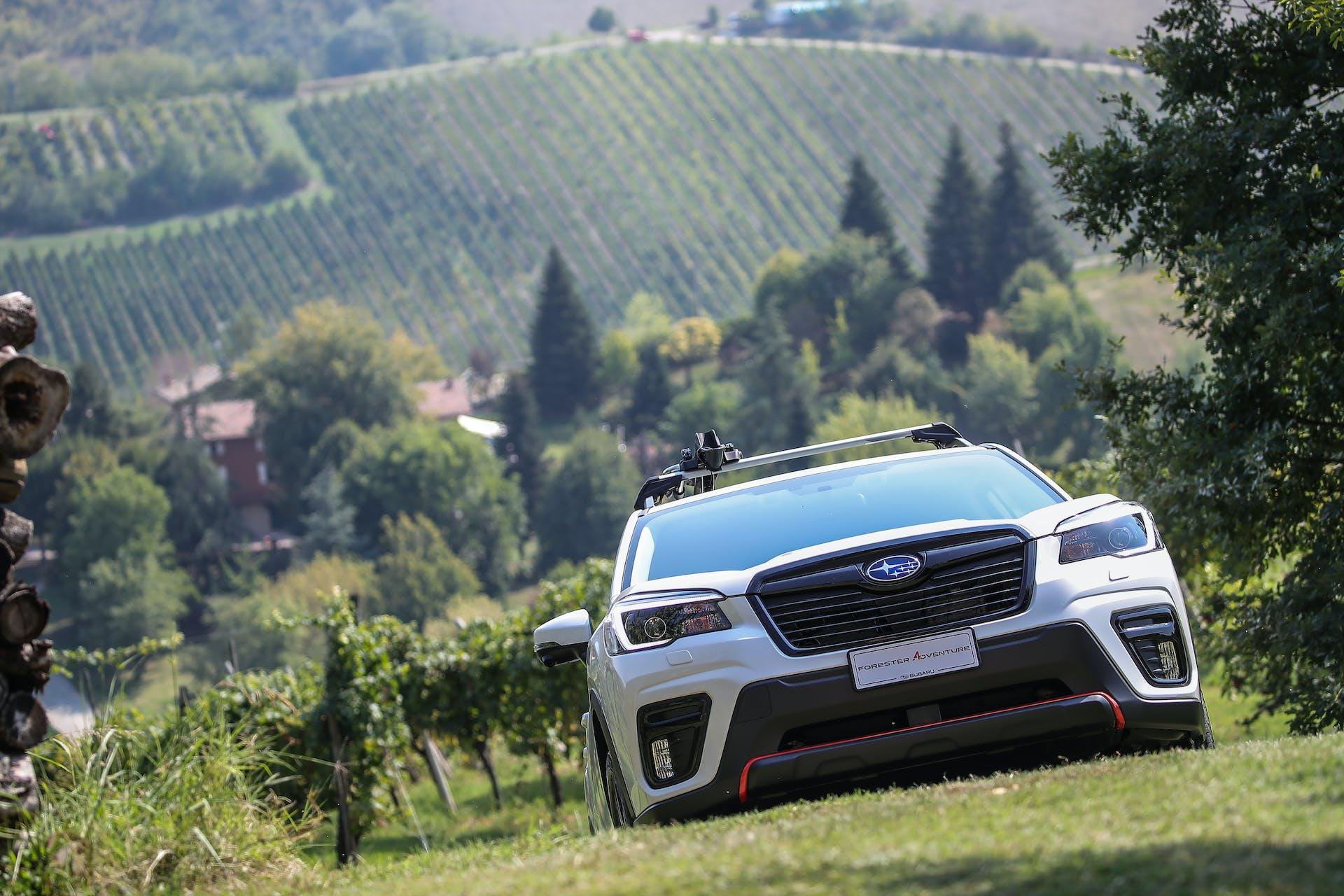 Subaru Forester 4Dventure