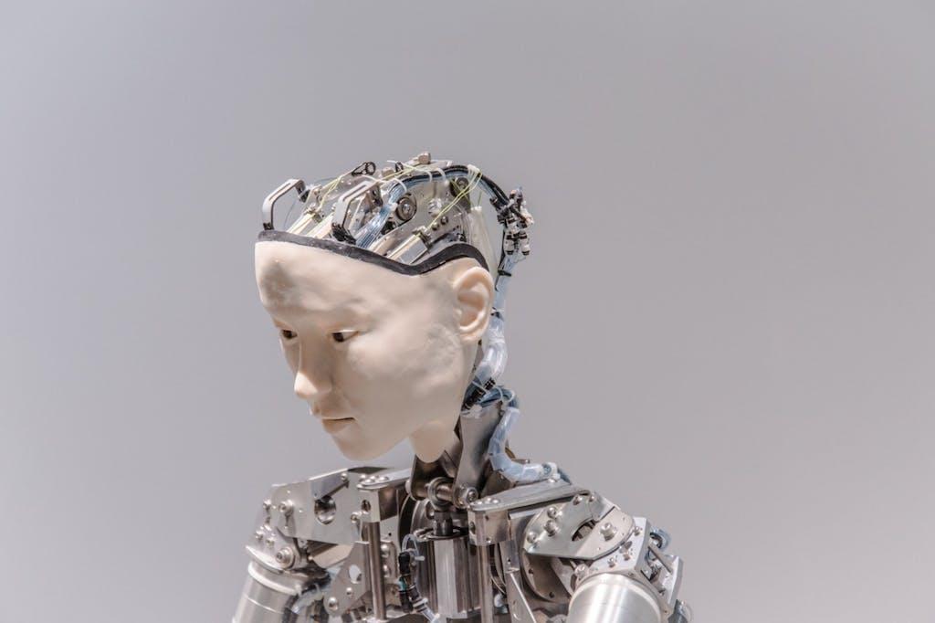 Immortality, Inc., le nuove frontiere della tecnologia puntano sulla longevity